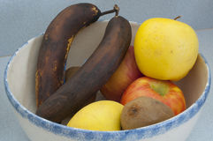 Overripe Bananas. In a fruit bowl with kiwis, golden delicious and fuji apples against a blue counter-top stock photos
