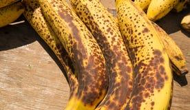 Overripe bananas Stock Image