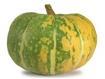 Overripe Pumpkin royalty free stock image