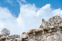 Iguana Lizard at Tulum Mayan Ruins. An iguana lizard on top of a brick wall at the Tulum Mayan Ruins royalty free stock photos