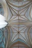 Overspannen plafonds met kolommen van Barokke en Gotische kerk van St Elizabeth in Lviv, de Oekraïne royalty-vrije stock afbeelding