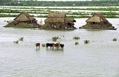 Overstromend in deltabangladesh, klimaatveranderingen royalty-vrije stock foto's