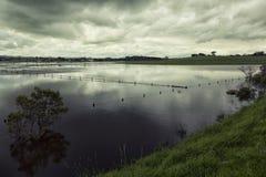 Overstromend in Victoria, Australië Royalty-vrije Stock Foto