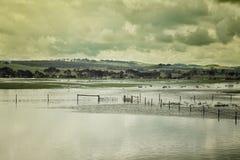Overstromend in Victoria, Australië Royalty-vrije Stock Fotografie