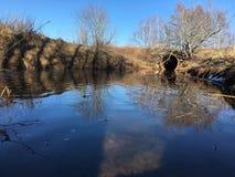 overstroming stock afbeeldingen