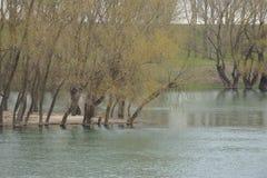 Overstroming op de rivier. Stock Fotografie