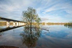 Overstroming op de rivier Akhtuba Stock Fotografie
