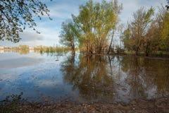 Overstroming op de rivier Akhtuba Royalty-vrije Stock Afbeelding