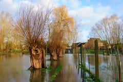 Overstroming in Vlaanderen royalty-vrije stock foto's