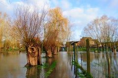 Overstroming in Vlaanderen stock fotografie