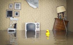 Overstroomd binnenland Stock Foto's