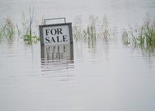 Overstroomd Land voor Verkoop Royalty-vrije Stock Foto's