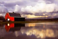 Overstroomd platteland royalty-vrije stock foto's