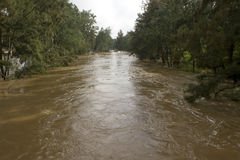 Overstroomde Nepean-Rivier Royalty-vrije Stock Foto's