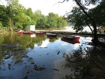 Overstroomde Potomac Rivier in Fletchers royalty-vrije stock foto