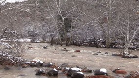 Overstroomde Rivier in de Winter stock video