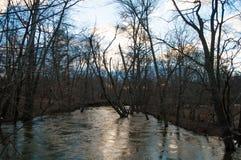 Overstroomde rivier in de winter Stock Fotografie