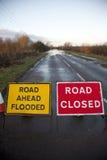 Overstroomde weg Royalty-vrije Stock Afbeeldingen