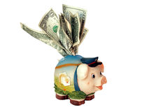 Overstuffed funny piggy bank Stock Photography