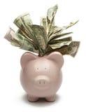 Overstuffed Piggy Bank Stock Photography