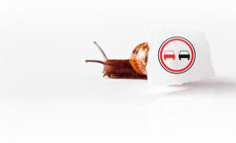 Overtaking is forbidden Royalty Free Stock Photography