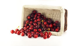 A overturn basket with spilled cherries. On the white background Royalty Free Stock Photos
