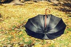 Overturn black umbrella on yellow foliage. Stock Photography