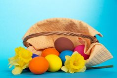 The overturned basket with eggs and yellow flowers Royalty Free Stock Photography