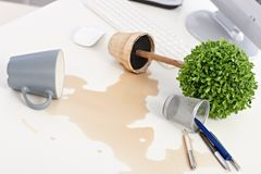 Overturned plant and spilled out coffee on desk Royalty Free Stock Images