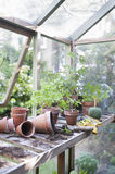 Overturned Pots In Greenhouse Royalty Free Stock Image