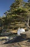 Small overturned rowboat stored on rocky shoreline, Gabriola Island, BC, Canada. stock image