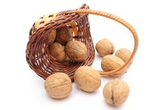 Overturned wicker basket with walnuts on white background Stock Photo