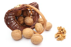 Overturned wicker basket with walnuts on white background Royalty Free Stock Photo