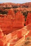 Overvieuw del canyon di Brice Immagine Stock