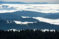 Overview about the Black Forest Stock Photography