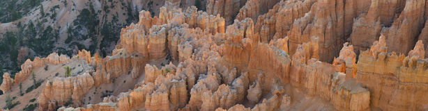 Overview of Bryce Canyon Royalty Free Stock Photography