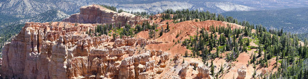 Overview of Bryce Canyon National P Royalty Free Stock Photo