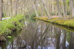 Overview of a Canal in a Forest in Country Estate Oosterbeek, Wassenaar, The Netherlands Stock Photos