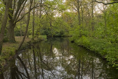 Overview of a Canal in a Forest in Country Estate Oosterbeek, Wassenaar, The Netherlands Royalty Free Stock Photo
