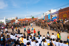 Overview Elephant Breakfast Stands Stock Photos