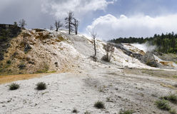 Overview Mammoth Hot Springs Royalty Free Stock Images