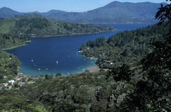 Overview of New Zealand bay. A pretty view from a high overlook of a bay in Marlborough Sounds Maritime Park, New Zealand Royalty Free Stock Photo