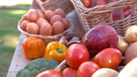 Overview of organic vegetables on stall in slow motion stock video footage
