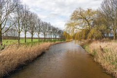 View over a small river in the spring season. Overview over a small Dutch river in the spring season. De reed stems are still yellow and the most of the trees Stock Photos