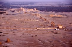 Overview of Palmyra in Syria Stock Image