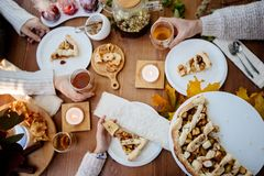 Picnic food served. royalty free stock images