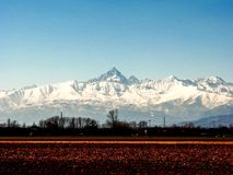 Snowy peak of Monviso, Piedmont, Italy. Overview of the snowy peak of Monviso surrunded by fields of countryside, Turin, Italy Royalty Free Stock Photos