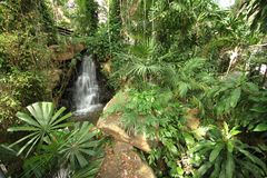 A overview of a tropical meadow with plants and waterfall and stones in the Nong Nooch tropical botanic garden near Pattaya city Stock Photo