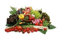 Overvloed van groenten royalty-vrije stock foto