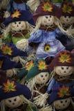 Overvloed van Vogelverschrikkers Royalty-vrije Stock Afbeeldingen